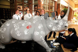 ABout us - Rhino Army at TWC raising funds